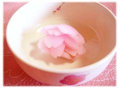 ひとひら Hitohira - Cherry blossom petals