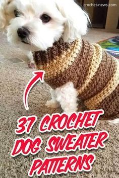 Crochet Sweater Design, Crochet Dog Sweater Free Pattern, Dog Coat Pattern, Crochet Dog Patterns, Sweater Patterns, Knitting Patterns Free Dog, Knit Dog Sweater, Sweater Coats, Crochet Ideas