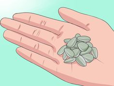 How to Plant Sunflower Seeds. Sunflowers are annual plants that produce large or small yellow flowers in the summer. Planting sunflower seeds in the.
