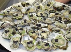 pacifica oysters