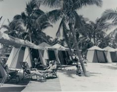 Crandon Park, 1959. I remember the Zoo..reminds me of my childhood!
