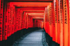 There is a reason that Kyoto is one of Japan's top cities for us travellers to visit. There's so much to do in this amazing city and the surrounding area