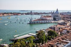 Best Venice View Rialto bridge