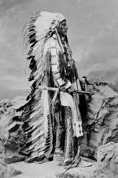 American Horse, Oglala Sioux. 1877 http://media-cache-ec3.pinterest.com/upload/216172850833292774_Wa8gtdOB_c.jpg