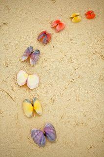 Bahamas Colors