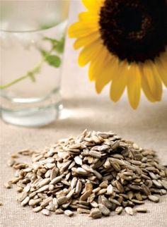 A semente de girassol é uma das maiores fontes de nutrientes para a saúde mental e emocional. Isso porque essa semente oleaginosa contém um alto teor de vitamina B, fundamentais para o bem estar psicológico e vitamina B1, que ajuda a manter o cérebro - Veja mais em: http://vilamulher.com.br/bem-estar/nutricao/semente-de-girassol-e-seus-beneficios-14831.html?pinterest-mat