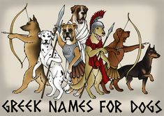 The secret to naming dogs! The pantheon of Greek heroes, gods, and monsters offers many interesting and unique names for male dogs. Learn their stories and tips for choosing the perfect puppy name. Strong Dog Names, Big Dog Names, Black Dog Names, Cute Puppy Names, Cool Pet Names, Baby Names, Unique Puppy Names Male, Male Dog Names Unique, Names For Male Dogs