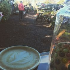 Making coffees today out at @pearsonsnursery today and tomorrow. Big sale on out here. People everywhere #shop3280 #allansford #destinationwarrnambool #warrnambool #pearsonsnursery #coffee3280 #coffeetreat #edibool by socialascat