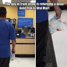 Walmart Dead Goldfish Return Policy - Funny Pictures at Walmart