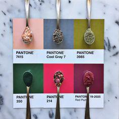 pink, salmon, gray, green, fuchsia, purple