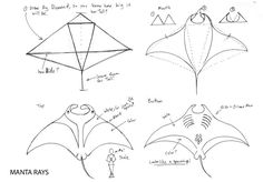 Draw a Manta Ray page 1 by Diana-Huang.deviantart.com on @deviantART