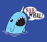 Make an amazing narwhal!! :)