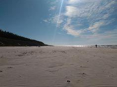 Sunny white sand beach in Bia?ogóra. Northern Poland.