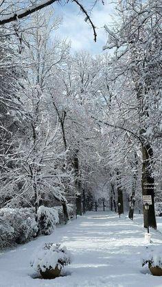 Picture from Taanayel, #lebanon. Photo sent by Gabriella Charbel #livelovelebanon #nature #snow