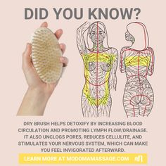 Health Diet, Health Fitness, Exercises, Workouts, Ways To Be Healthier, Detox Your Body, Dry Brushing, Reflexology, Beleza