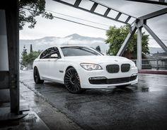 BMW 750 Li on Niche Stance