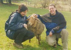 """Cobunrgerfuchs Schaf """"Anjela"""", ein sehr zahmes Schaf, das es liebte sich kraulen zu lassen"""