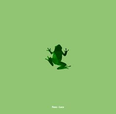 Frog - Luck