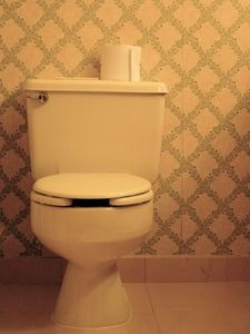 Home Remedies for Cleaning Hard Water Stains in Toilets thumbnail