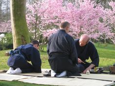Chabako tea ceremony with cherry blossoms, Hasselt