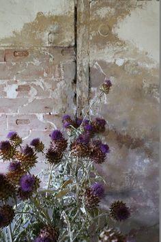 Art Claire Basler // chateau de bouvoir