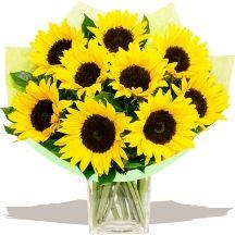Van Gough Sunflowers #flowers