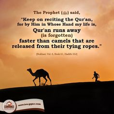 """Narrated Abu Musa (may Allah be pleased with him): The Prophet (pbuh) said, """"Keep on reciting the Qur'an, for, by Him in Whose Hand my life is, Qur'an. Prophets In Islam, Islam Hadith, Islam Quran, Alhamdulillah, Muslim Quotes, Religious Quotes, Islamic Quotes, Islamic Posters, Hadith Of The Day"""