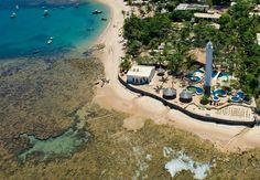 Projeto Tamar - Praia do Forte - BA