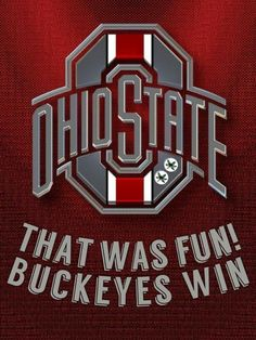 Every Saturday/Every Fall! Ohio State Buckeyes, Ohio State Stadium, Buckeyes Football, Ohio State Football, Ohio State University, American Football, Ohio State Wallpaper, Retro Bowling Shirts, Sports Quilts