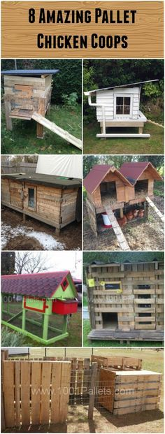 Chicken Coop - 8 Pallet Chicken Coops Building a chicken coop does not have to be tricky nor does it have to set you back a ton of scratch. Chicken Coop Garden, Chicken Coop Pallets, Chicken Barn, Best Chicken Coop, Chicken Coop Plans, Building A Chicken Coop, Chicken Houses, Chicken Coup, Canard Coop