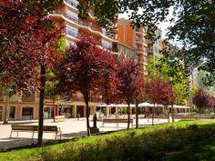 Mistral's avenue (Barcelona, Spain)
