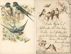 Love the Victorian illustrations. Vintage Labels, Vintage Ephemera, Vintage Paper, Vintage Postcards, Vintage Prints, Floral Vintage, Vintage Pictures, Vintage Images, Illustrations