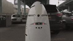 Silicon Valley Deploys Crime-Fighting Robots To Patrol The Streets Day and Night In the latest development from Silicon Valley, a Palo Alto startup called