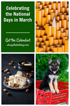 March has National Pencil Day, National Nougat Day and Little Red Wagon Day among more than 150 other special days. Get the printable calendar for the month to plan your activities. #calendar #printable #nationaldays National Days In March, A Days March, National Day Calendar, Free Printable Calendar, Free Printables, Little Red Wagon, Days Of The Year, Favorite Holiday, Special Day