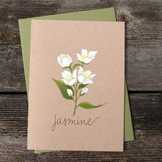 Jasmine Flower Original Watercolor Greeting Card - Modern White Yellow Floral Botanical Hand Lettering - Birthday Just Because Mother's Day