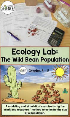 Ecology Lab: The Wild Bean Population - Estimating Population Size 7th Grade Science, Preschool Science, Science Classroom, Teaching Science, Life Science, High School Biology, High School Science, Steam Education, Interactive Journals