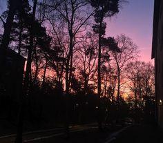 Sunrise #sunrise #outsidemydoorstep #hägerstensåsen #stockholm #stockholm_insta #sweden #visitsweden #travel #ttot