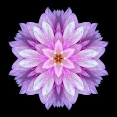 Proyecto Conciencia Solar, tercera meditación mensual: el Renacimiento a través de la Red de Vida. Por Kai 30-03-2013    Llegamos al tercer mes del año con gran celeridad, la Madre Tierra se mu…