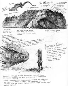 Glaurung studies by TurnerMohan.deviantart.com. This wormy, crocodilian style is exactly how I imagine Glaurung.