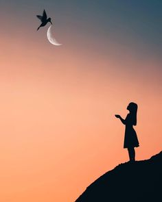 Silhouette Photography, Moon Photography, Surrealism Photography, Stunning Photography, Dark Pictures, Night Pictures, Nature Pictures, Shadow Images, Shadow Art