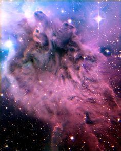 The Fox Fur Nebula Original Image Credi Cosmos, God Is Amazing, Hubble Images, Deep Space, Space Space, Space Cat, Earth From Space, Dark Matter, To Infinity And Beyond