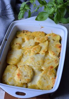 Mozzarella, Cauliflower, Menu, Vegetables, Food, Essen, Menu Board Design, Cauliflowers, Vegetable Recipes