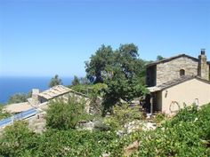 ethicalescape ecoholidays greece; ikarian wine club , ikaria, greece,sustainable holidays/places to stay