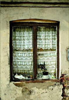 Une vieille fenêtre, des rideaux de dentelle, une plante, un chat qui dort ou qui surveille : quoi de plus paisible ?