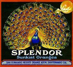 San Fernando Splendor Peacock Orange Citrus Fruit Crate Label Art Print