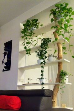 Great Bookcase Design Ideas for A Book Lover - Raumteiler ideen Living Room Partition, Room Partition Designs, Diy Wall Decor, Diy Home Decor, Home Room Design, House Design, Pinterest Home, Interior Decorating, Interior Design
