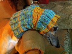 Ravelry: veebran's Cowl or Snood for a Greyhound