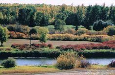 Pasquia Regional Park - near Carrot River, Saskatchewan