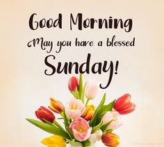 70 Happy Sunday Wishes, Messages and Quotes   WishesMsg Happy Sunday Messages, Sunday Wishes Images, Happy Sunday Images, Good Morning Sunday Images, Good Day Wishes, Good Morning Flowers, Good Morning Messages, Good Morning Greetings, Wishes Messages