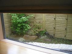 自分で作った坪庭 | わたしのお気に入り - 楽天ブログ Small Japanese Garden, Japanese Garden Design, Japanese Gardens, Zen Garden Design, Balcony Design, Indoor Garden, Home And Garden, House In Nature, Looking Out The Window